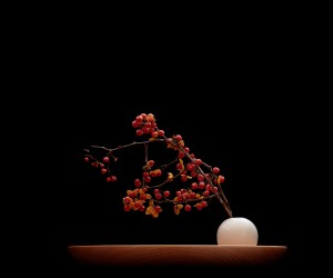 Vide Poche by Mikiya Kobayashi