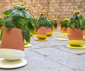 VoltaSol: Rolling Flower Pots