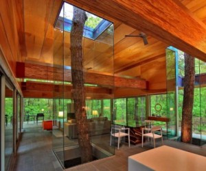 West Virginia glass forest home