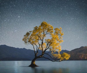 Wonderful Outdoor and Landscape Photography by Luke Stackpoole