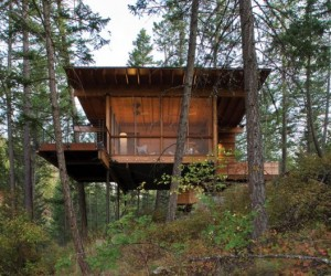 Wooden Forest Cabin in Montana