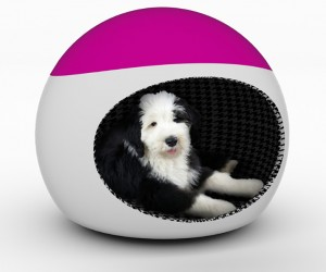 Woofice: An All-In-One Doggie Den, Chair, and Exercise Ball