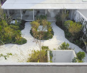 Zeller  Moye Adds Roof Garden To Mexican Townhouse